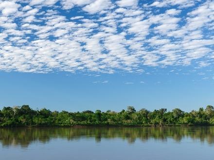 Otra - Amazonas Colombiano